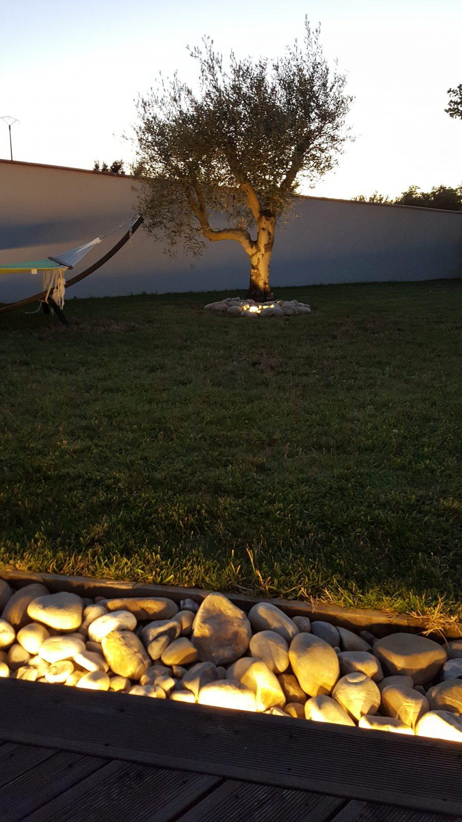 bandeau led, spots led enterrés, terrasse bois, éclairage arbre